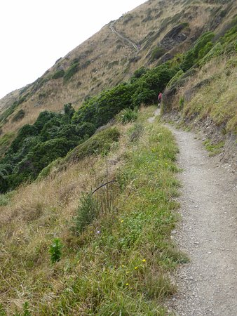 Paekakariki, New Zealand: And ahead to one set of 'Stairways to Heaven'