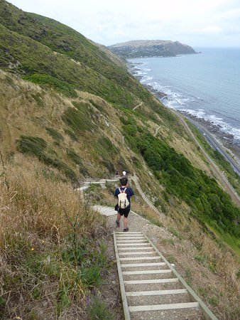Paekakariki, New Zealand: Looking back along the track and down the steps withPukerua Bay in the distance