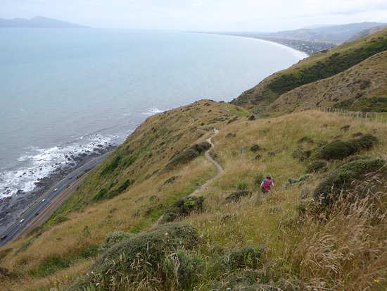 And now down to Paekakariki beyond
