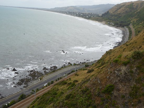 Paekakariki hidden in the foliage beyond the highway and rail - tea, coffee, food or lunch if ne