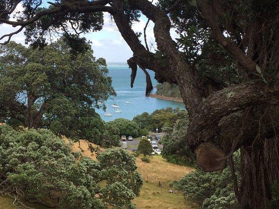 Pulau Waiheke, Selandia Baru: photo2.jpg
