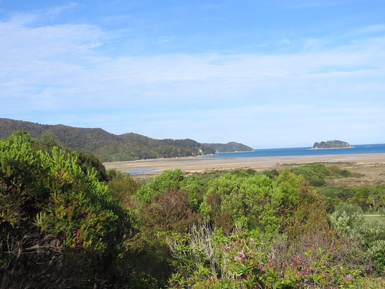 Abel Tasman Ocean View Chalets: Outlook from Chalet