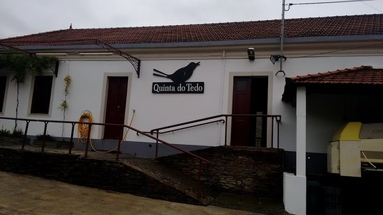 Folgosa, Portugal: Vinícola