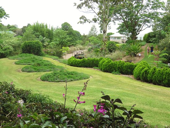 Maleny, Αυστραλία: A view across one of the gardens