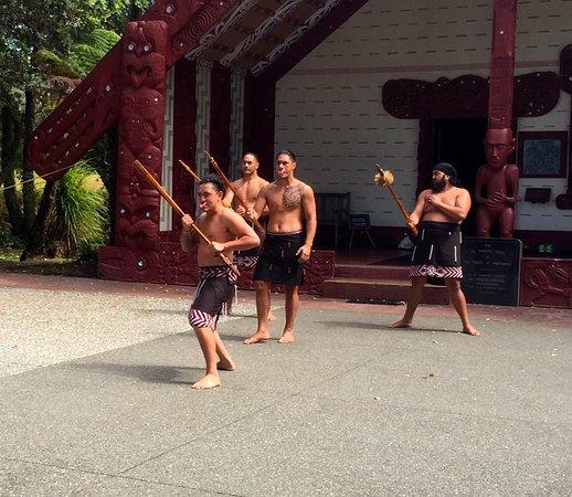 Пайхия, Новая Зеландия: Warriors Welcome/Challange