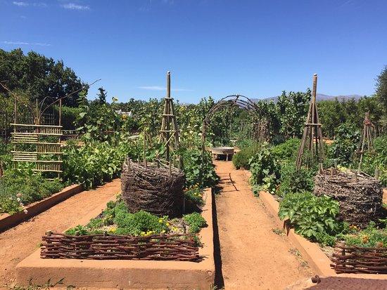 Cape Barat, Afrika Selatan: photo4.jpg