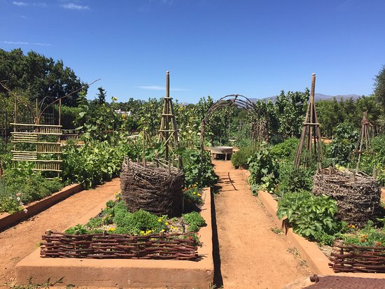 Western Cape, South Africa: photo4.jpg