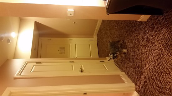 Hilton Promenade at Branson Landing: Superior room with balcony in the South building.  Room interior