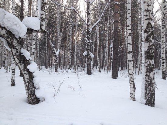 Berezovaya Roshha Ski Lodge