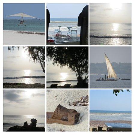 Msambweni, Kenya: Some sights. . .