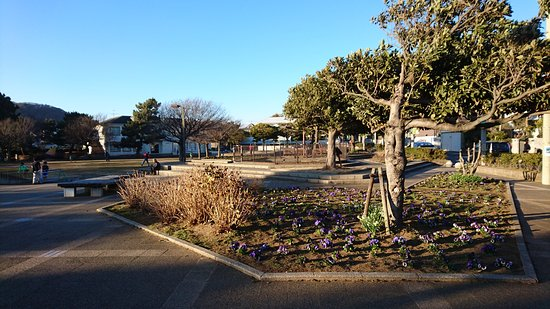 Nadeshiko Park