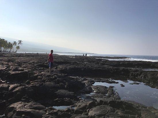 Honaunau, ฮาวาย: photo3.jpg