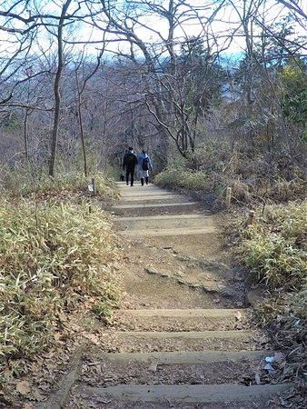 高尾山, The trail of No.9
