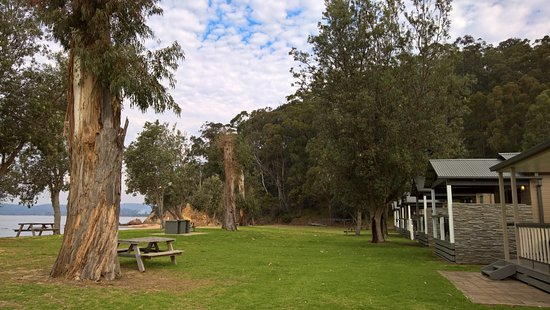 Eden, Australia: Outside the cabins
