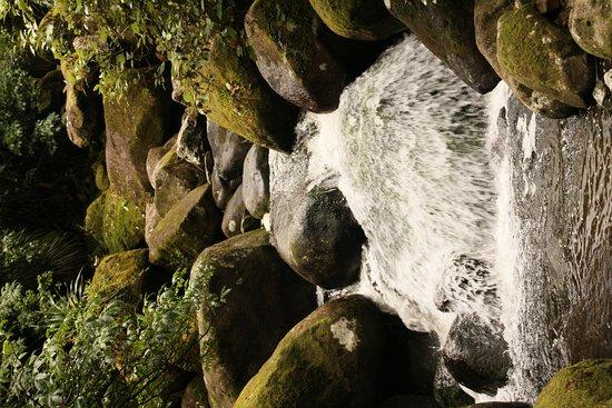 Bay of Plenty Region, Selandia Baru: Wairere Falls on a windy day