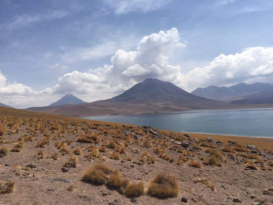 Lagunas Miscanti y Miniques: photo0.jpg