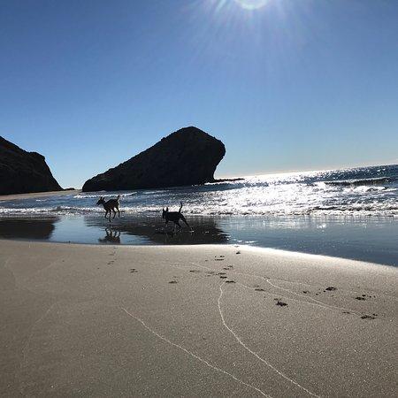 photo5.jpg - Picture of Monsul Beach, San Jose - TripAdvisor