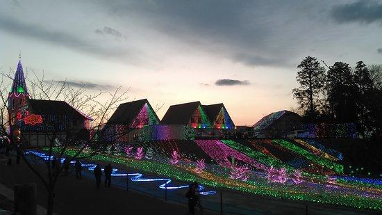 写真東京ドイツ村枚