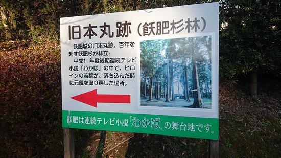 Nichinan, اليابان: DSC_0497_large.jpg