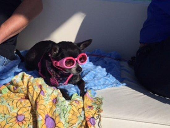 จูปีเตอร์, ฟลอริด้า: Bring  forget your sun glasses !