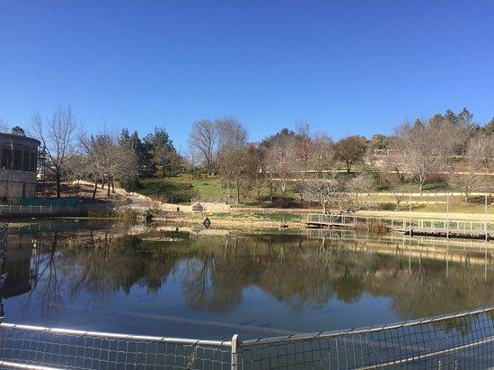 Caffit, Botanical Gardens: photo2.jpg