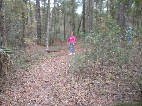 Brooksville, FL: Example of the trails