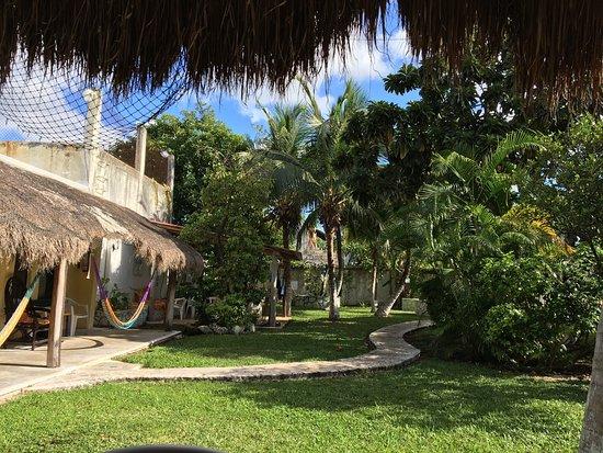 Amigos Hostel Cozumel : photo1.jpg