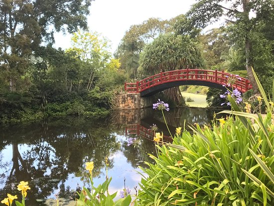 Wollongong, Australia: one of the best botanic garden we visited in Australia.
