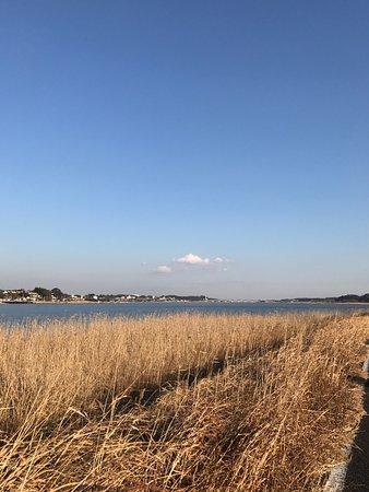Kashiwa, Japón: 手賀沼