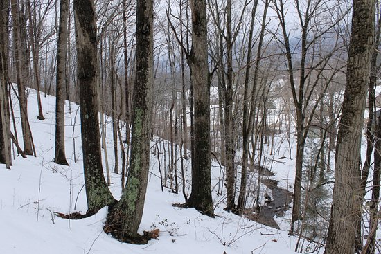Afton, VA: Snow on the ridge and view of the creek.