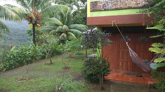 Marigot, Dominica: IMG_20170108_081506_large.jpg