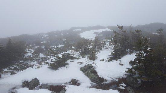 Gorham, Nueva Hampshire: 20170122_094037_large.jpg