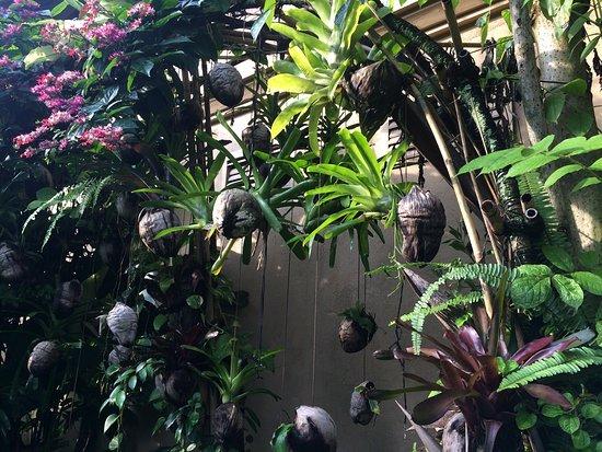 Komaneka at Monkey Forest: コマネカリゾート アット モンキーフォレスト