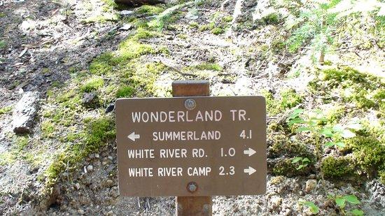 Mount Rainier: Die Wanderwege sind gut beschildert.