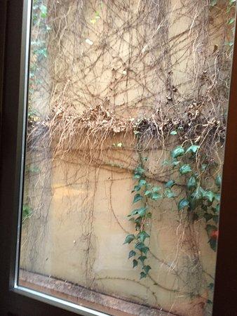 """Don Pio: photo de la """" vue """" de notre chambre accompagnant avis Horrible"""