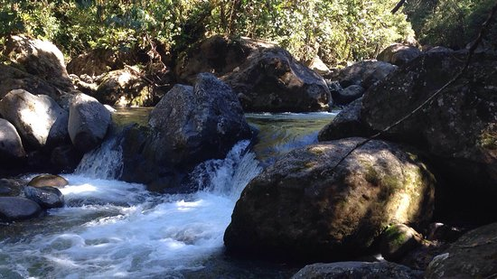 Chiriqui Province, Panama: photo6.jpg
