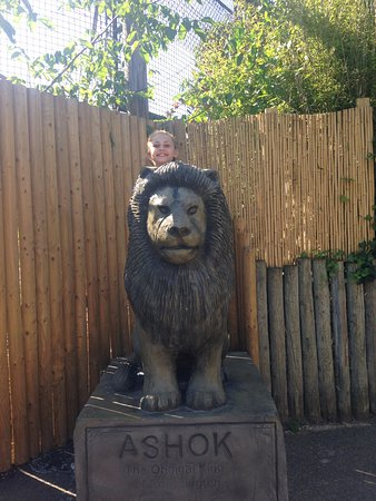 Chessington, UK: Lion Statue