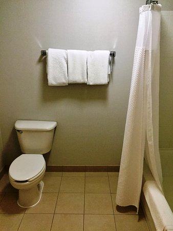 Roseville, CA: Basic bathroom