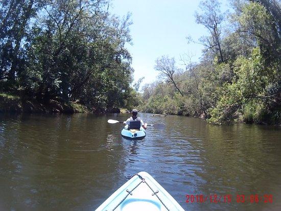 Imbil, Australia: Lekker rustig aan en geniet van de natuur