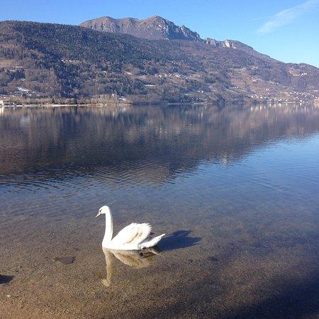 Calceranica al Lago 사진