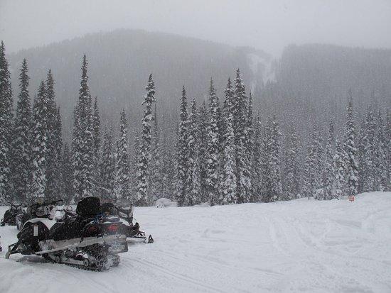Golden, Canada: Ballade dans les Rocheues canadiennes en snowmobile