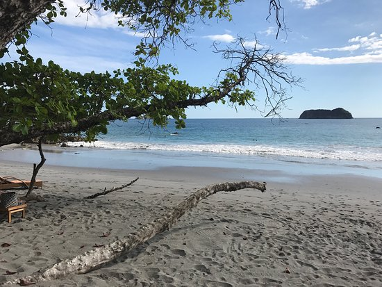 Arenas del Mar Beachfront and Rainforest Resort, Manuel Antonio, Costa Rica: photo7.jpg