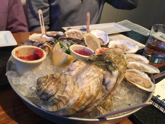 Bristol, RI: A big 'un: Hope Island oyster.