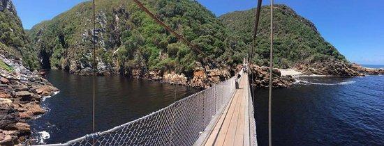 Port Elizabeth, South Africa: The amazing bridge of Tsitsikamma national park