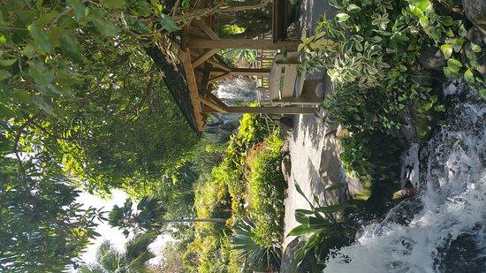 Deshaies, Guadalupe: 20160428_103613_large.jpg