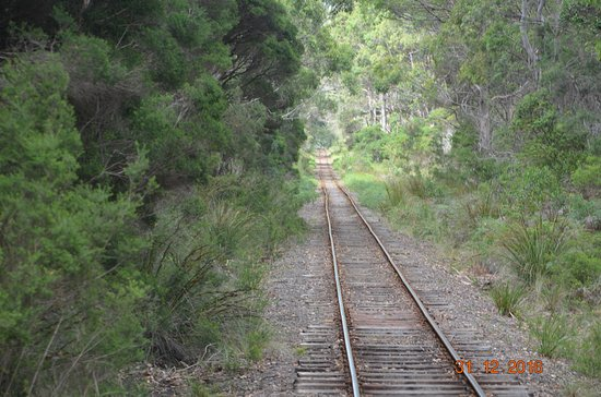 Don River Railway: The track travelled