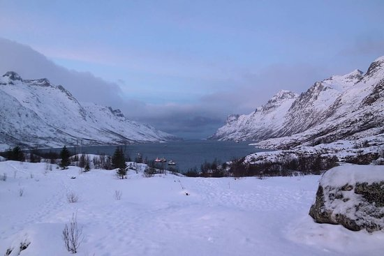 Krokelvdalen, Norway: An amazing tour, i had  a wonderful tour, Daniel ina great guide, we went to the fjord and had a