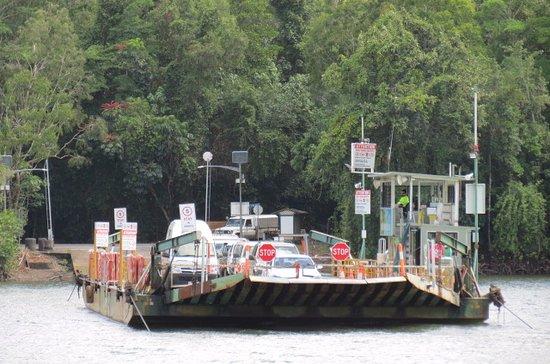 Daintree, أستراليا: The Daintree ferry