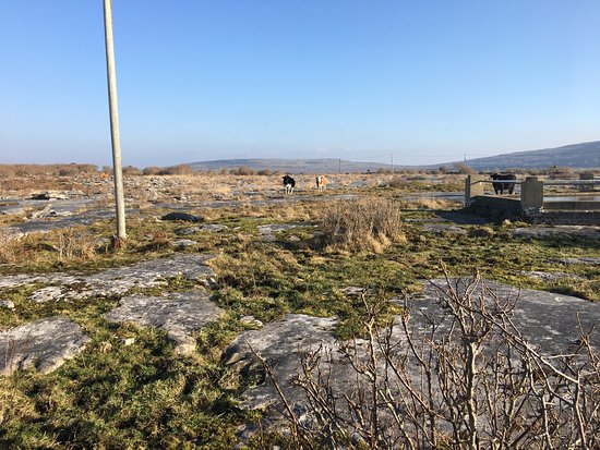 Kilfenora, Ireland: Stunning landscapes, very special place