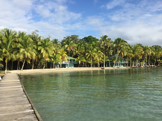 Buccaneer Resort : Feels like your in paradise! Not a five star hotel but a Real tropical Island experience! So hap